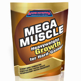 Mega Muscle 10kg Mass Gainer Whey Protein